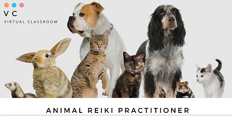 Animal Reiki Practitioner tickets