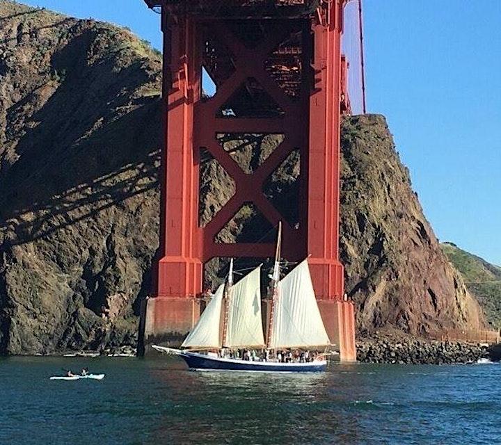 Mother's Day Sail Under the Golden Gate Bridge - Marine Wildlife image