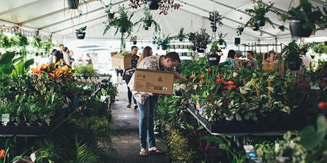 Brisbane - Huge Indoor Plant Warehouse Sale - Trop tickets