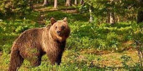 Bear Test Event tickets