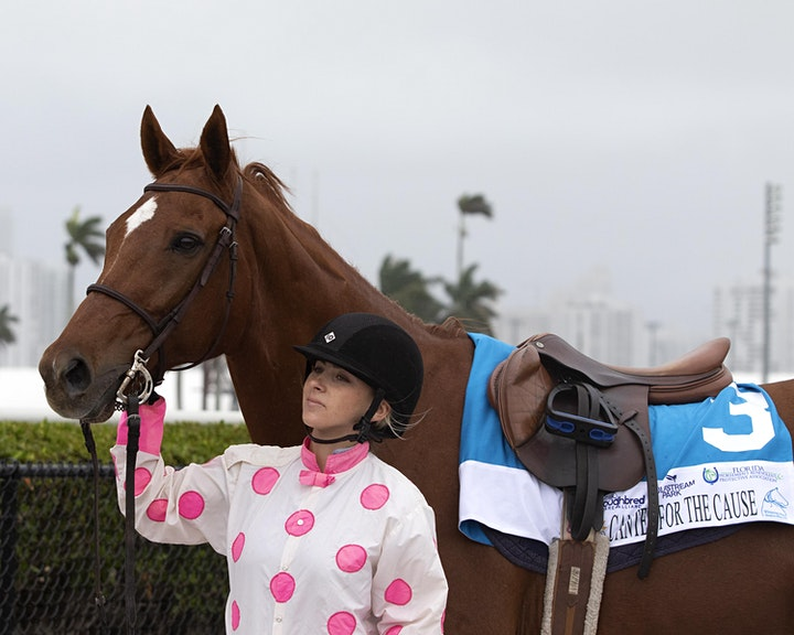 Canter for the Cause image