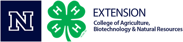 CCSD FACES Super Saturday  with Extension! image