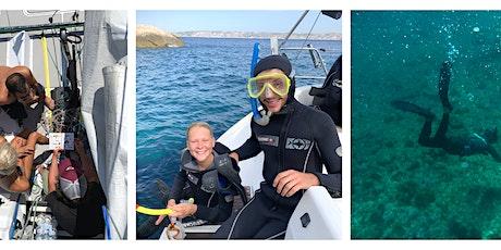 Voile & Snorkeling #3 billets