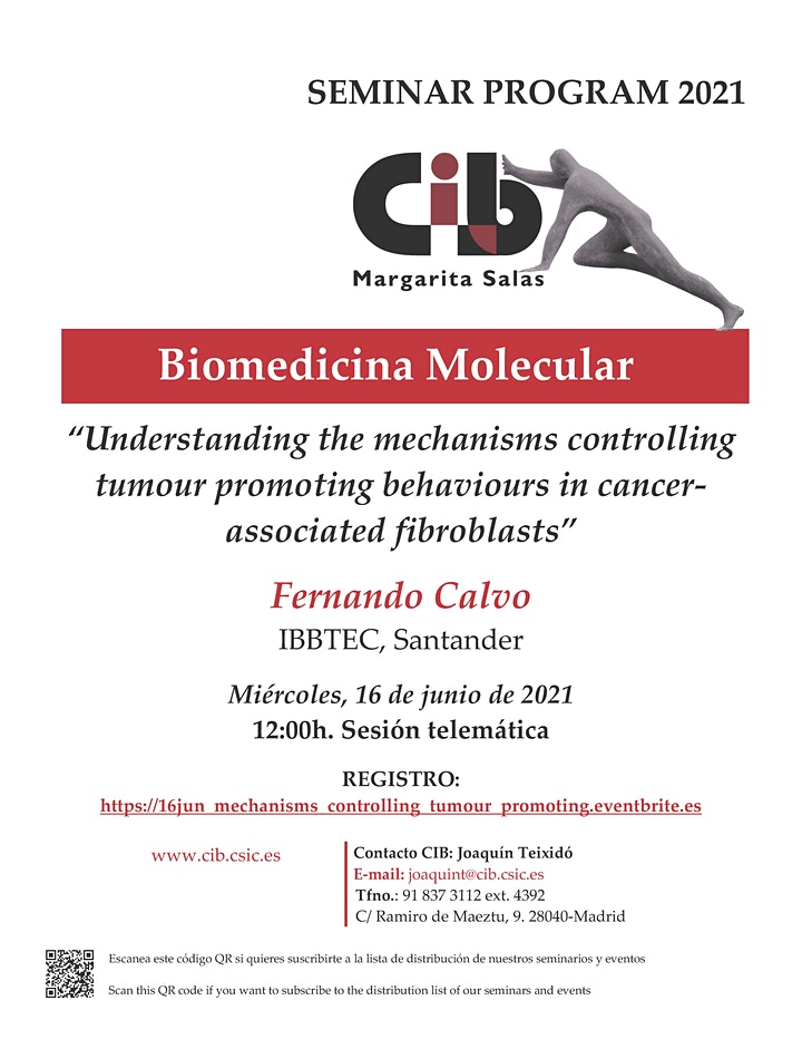 Imagen de Understanding the mechanisms controlling tumour promoting behaviours