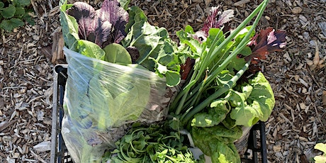 Ambrose Community Garden  Produce Pickup tickets