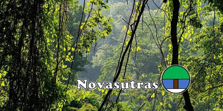 Global Solstice Celebration with Novasutras image
