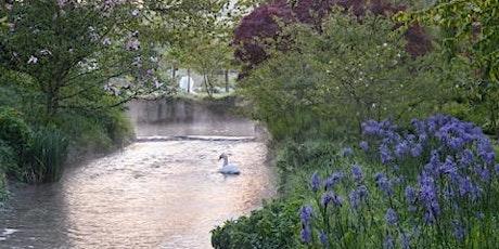 Unforgettable Gardens - Heale  Garden tickets