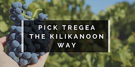 Pick Tregea the Kilikanoon Way tickets