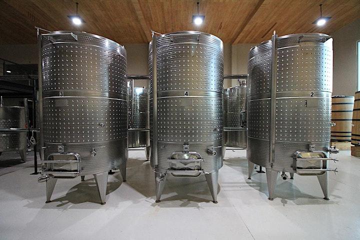 Destination food, wine & art class in beautiful San Miguel de Allende image