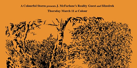 A Colourful Storm: J. McFarlane's Reality Guest (Live) + Silzedrek (Live) tickets