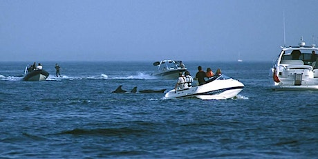 Wildlife Safety and the SAC - Protecting marine life in the Fal and Helford tickets