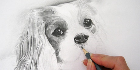 Pet Portraiture Techniques with Caroline Rilatt tickets