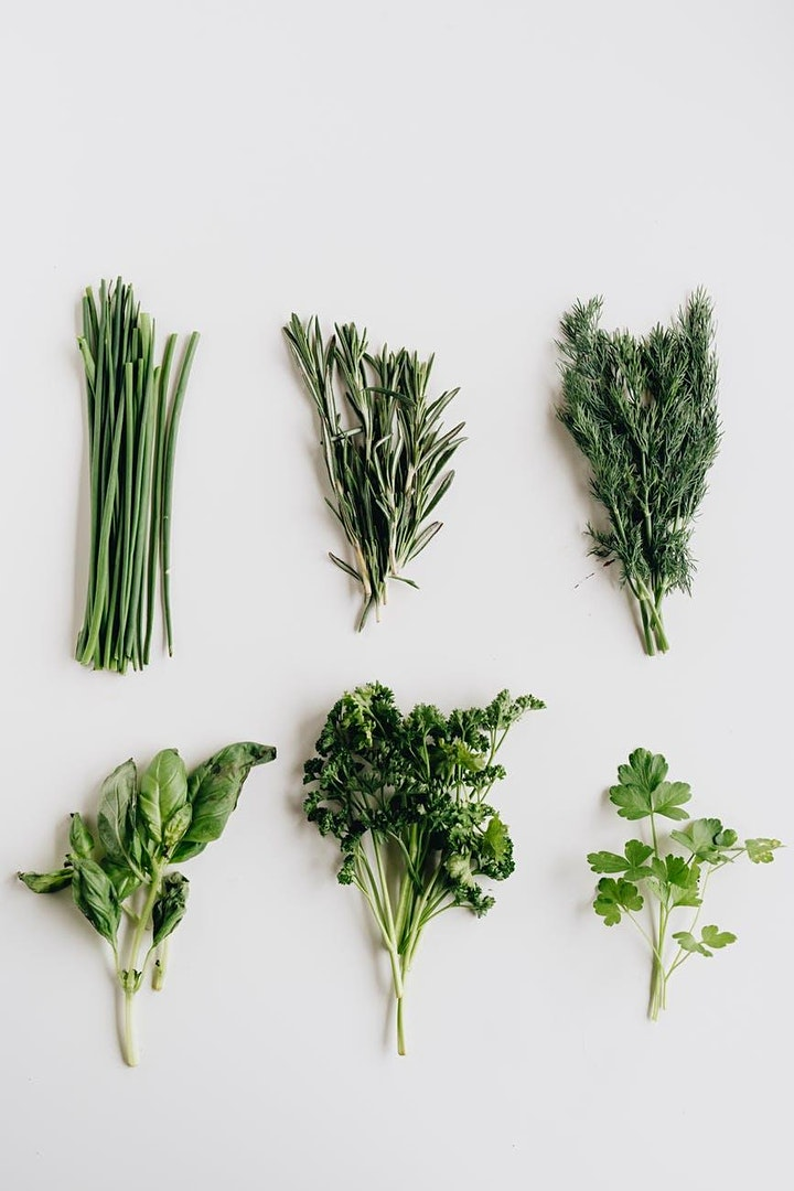 Connecting Circles: Growing Herbs in the Kitchen image