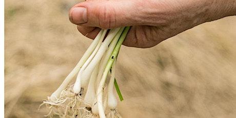 Foraging for Field Garlic | Cooking Pesto & Pasta! tickets