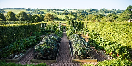 Yeo Valley Organic Garden Days 2021 tickets