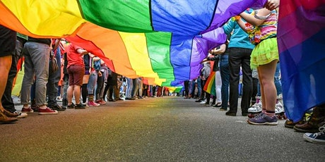 LGBTQ, SOGIE?: Improving Outcomes for Youth In Care tickets