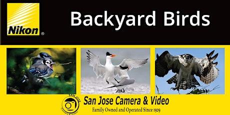 Bird Photography - Backyard Birds tickets