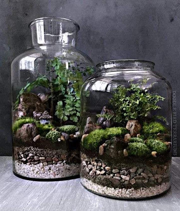 Glass Jar Terrarium Workshop image