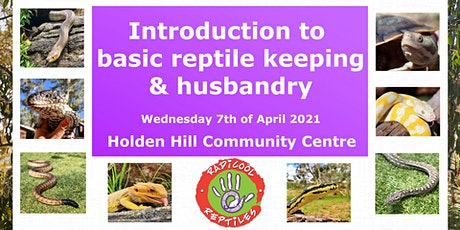 Introduction to basic reptile keeping and husbandry tickets