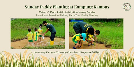 Sunday Paddy Planting at Kampung Kampus tickets