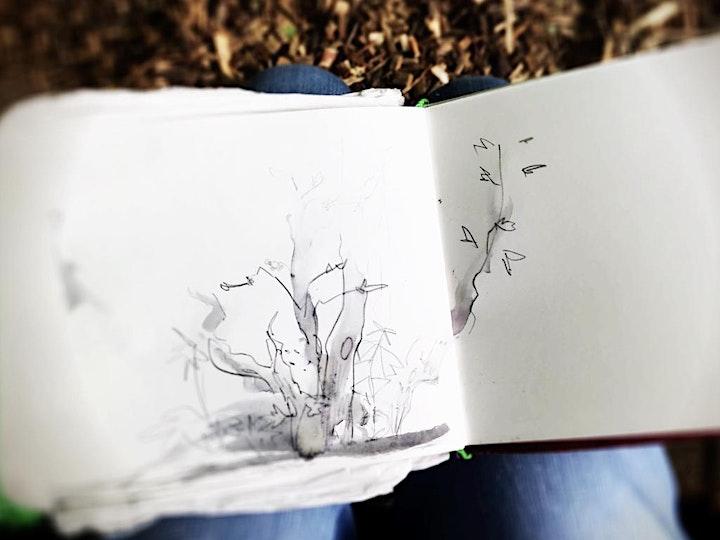 Afbeelding van Meditatief planten tekenen: workshop 2  INKT