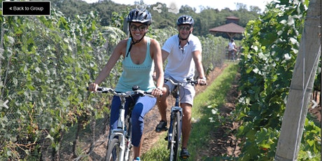 Classic Wine Country Bike Tour - in Long Island, NY - $110 tickets