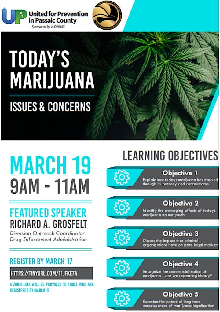 Today's Marijuana - Issues & Concerns image