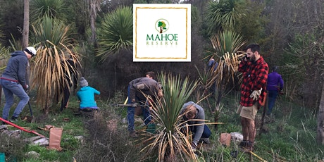 Mahoe Reserve Working Bee tickets
