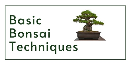 Basic Bonsai Techniques tickets