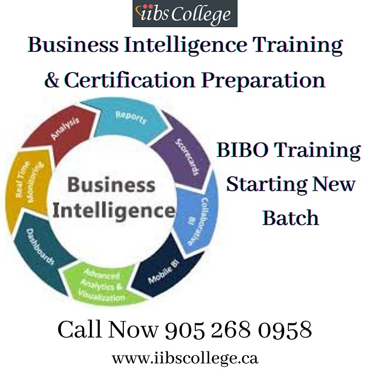 We are starting Business Intelligence & Business Objects (BIBO) Training image