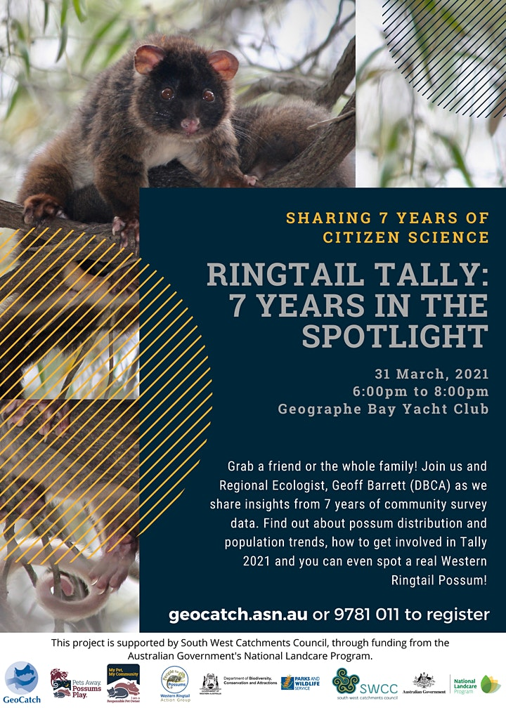 Ringtail Tally: 7 years in the Spotlight image