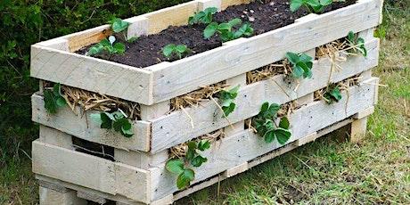 Help create a #BetterBriggs garden tickets