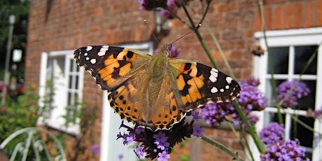 Intro to Wildlife Gardening series (Full series) tickets