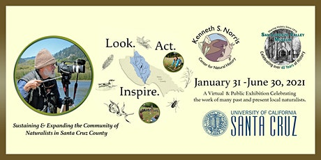 In-Person Visits to Look Act Inspire at the San Lorenzo Valley Museum tickets