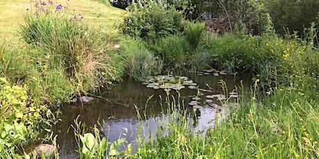 Intro to Wildlife Gardening - Ponds tickets