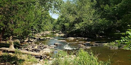 Buckquarter Creek Wildflower Hike tickets