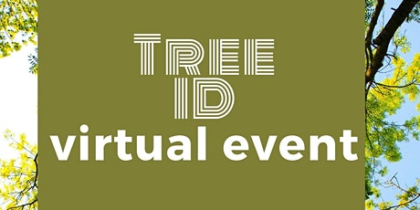 Tree ID for beginners virtual event tickets