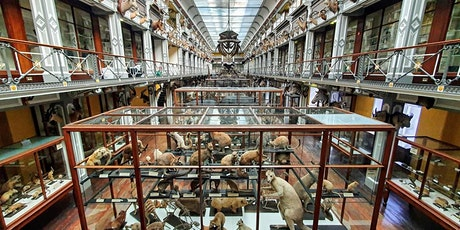 Virtual PubSci - Dismantling the Dead Zoo | Paolo Viscardi tickets
