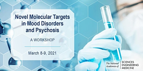 Novel Molecular Targets in Mood Disorder and Psychosis: A Workshop bilhetes