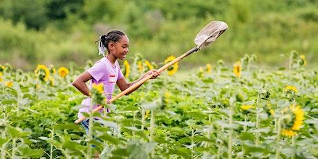 Summer Camp: Nature Investigators (Ages 5-7) tickets