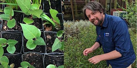 Propagating native plants tickets