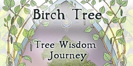 Birch Tree - Tree Wisdom Journey - Online Workshop tickets