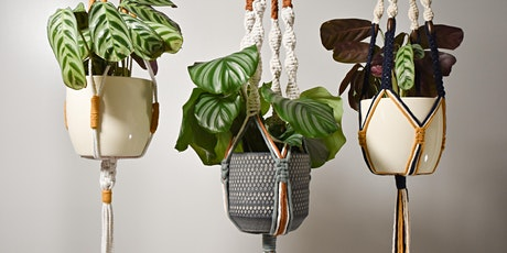 Online Mother's Day Macramé Plant Hanger Workshop tickets