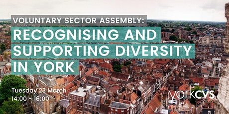 Voluntary Sector Assembly: Recognising and supporting diversity in York tickets