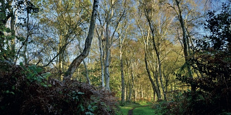 An Introduction to Forest Bathing at Flitwick Moor tickets