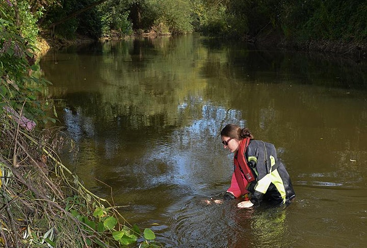 Café Sci - Restoring our Rivers – Removing Barriers to Fish Migration image