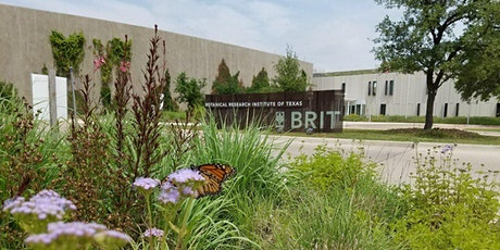 BRIT Adult Education: Gardening for Rainwater: BRIT Bioswales and Beyond tickets