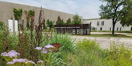 BRIT Adult Education: Bulletproof Plants tickets