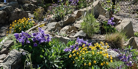 CRAGS online talk:  Stone, Slope, and Aspect in rock gardens tickets