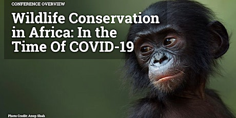 Wildlife Conservation in Africa: In the Time of COVID-19 tickets